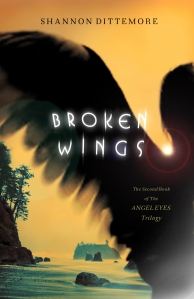 Broken-Wings_cover
